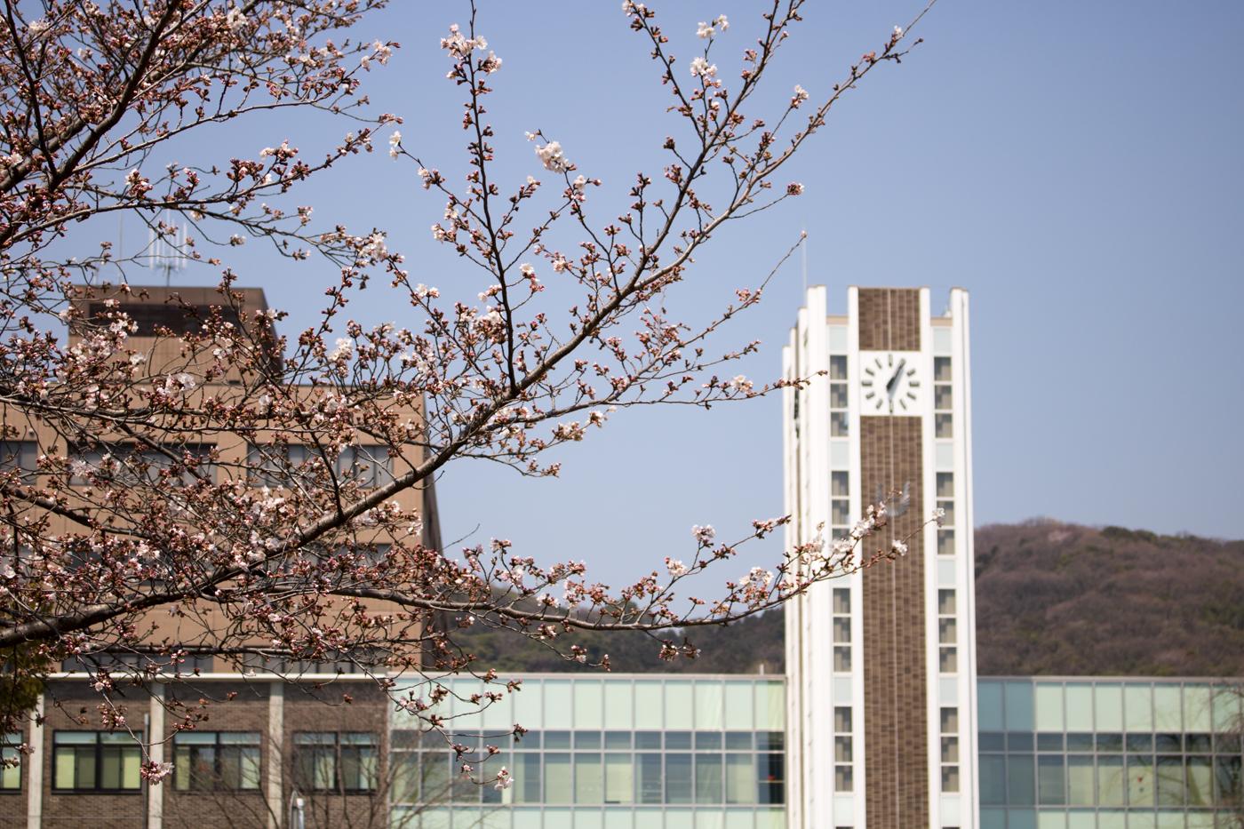 桂聖太朗さん(兵庫県立姫路東高等学校卒)